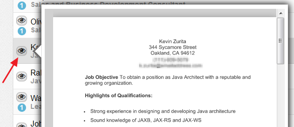 preview-candidate-resume