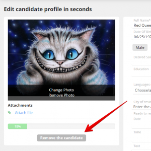 dlya oblozhki 1 300x300 - New feature: Complete removal of candidates, users, employees and the whole account